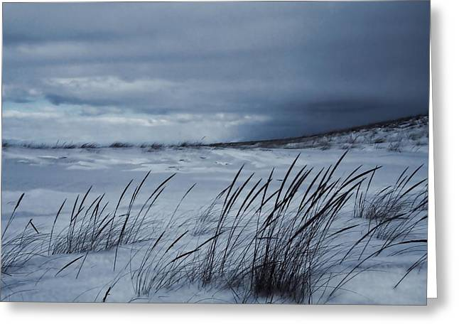 Storm Cloud On The Horizon Greeting Cards - Alone On The Beach Greeting Card by Dan Sproul