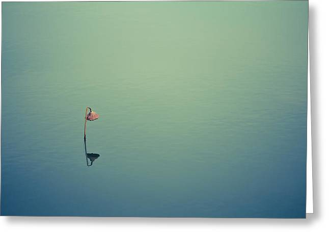 Alone Photographs Greeting Cards - Alone Greeting Card by Shane Holsclaw