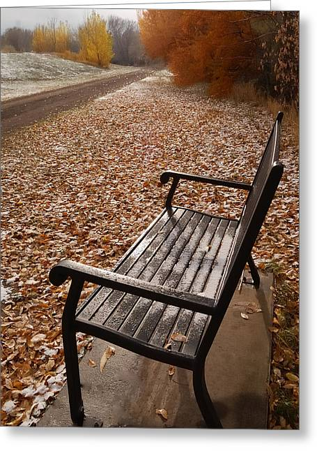 Alone With Autumn Greeting Card by Steven Milner