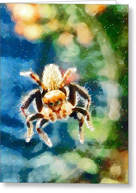 Muffet Greeting Cards - Along came a spider Greeting Card by Steve Taylor