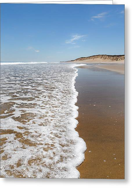 Recently Sold -  - New England Ocean Greeting Cards - Along The Beach Greeting Card by Bill  Wakeley
