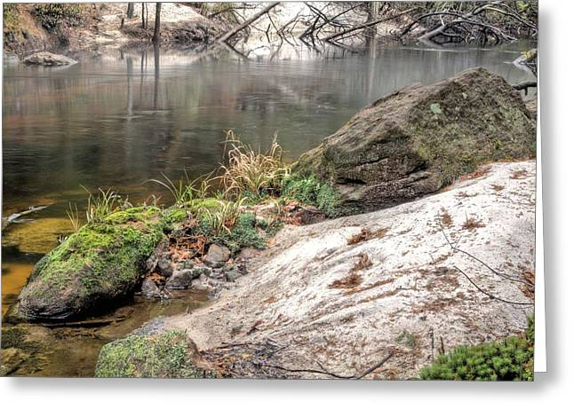 Along the Black Water River Greeting Card by JC Findley