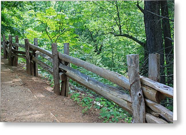 Split Rail Fence Greeting Cards - Along the Blue Ridge Parkway III Greeting Card by Suzanne Gaff