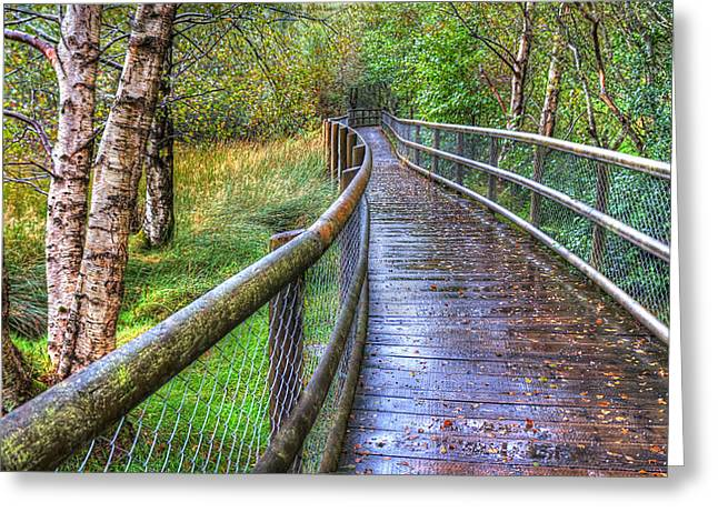 Hdr Landscape Greeting Cards - Along the Boardwalk Greeting Card by Kim Shatwell-Irishphotographer