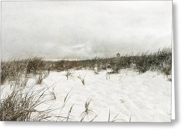 Storm Clouds Cape Cod Greeting Cards - Along the Cape Cod National Seashore Greeting Card by Michelle Wiarda