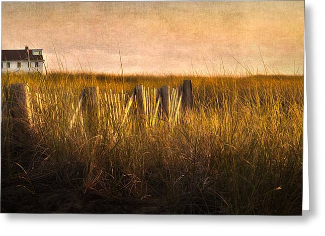 Along The Fence Greeting Card by Bill Wakeley
