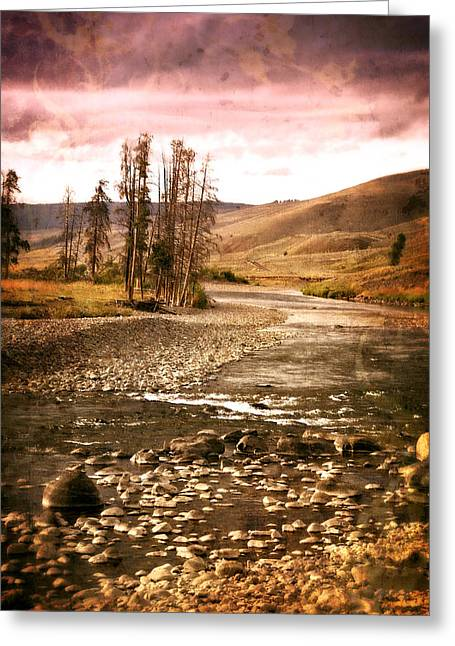 Marty Koch Greeting Cards - Along the Larmar River 2 Greeting Card by Marty Koch