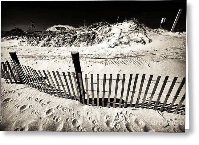 Sand Fences Greeting Cards - Along the LBI Dune Fence Greeting Card by John Rizzuto