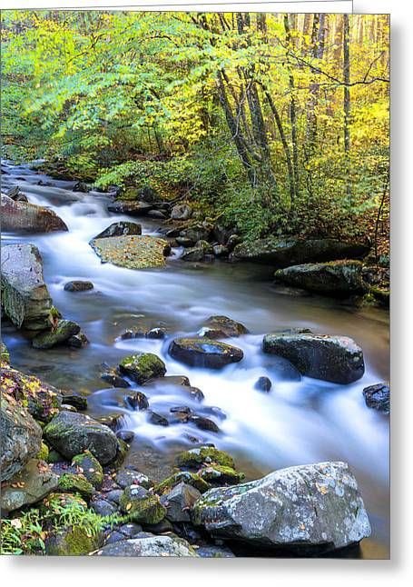 Water Fall Greeting Cards - Along the Oconaluftee River Greeting Card by Andres Leon