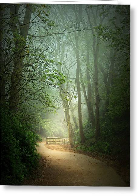 Along The Path Greeting Card by Svetlana Sewell