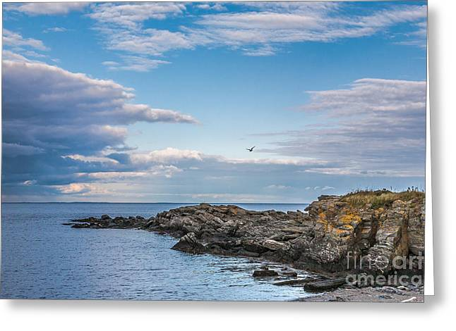 Maine Shore Greeting Cards - Along the shore Greeting Card by Gene Healy