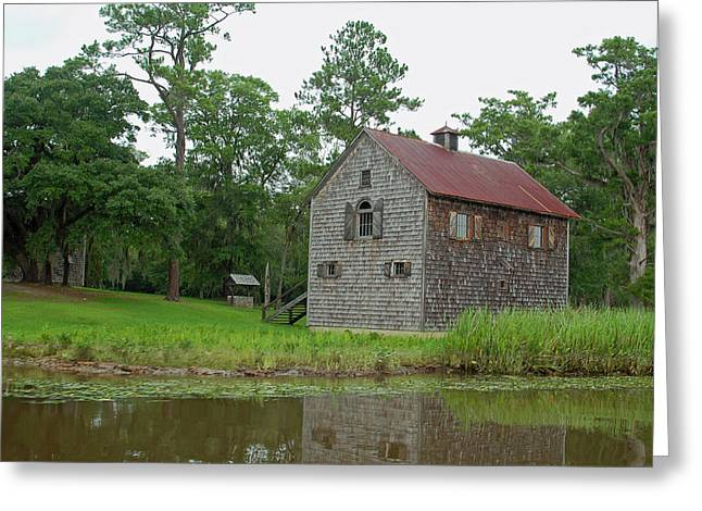 Wooden Building Greeting Cards - Along the Waccamaw II Greeting Card by Suzanne Gaff
