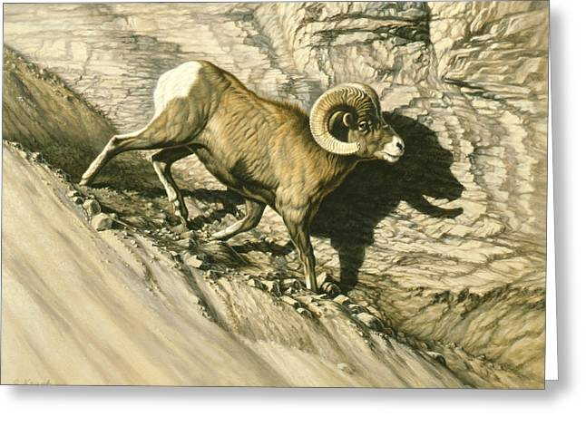 Bighorn Greeting Cards - Along the Wall-Bighorn Ram Greeting Card by Paul Krapf