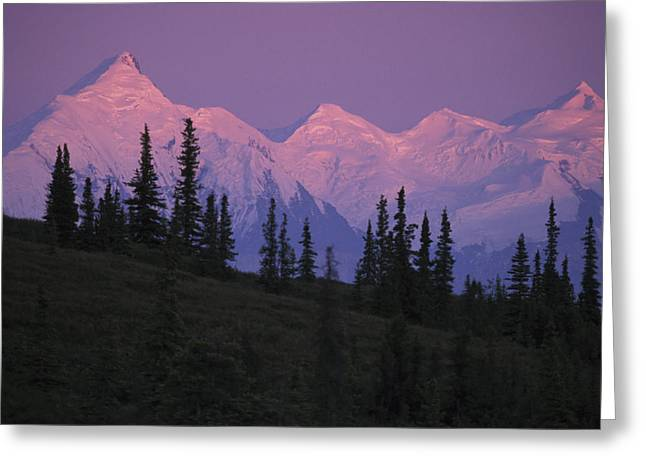 Beautiful Scenery Greeting Cards - Alpenglow On Mt Brooks & Ak Range Greeting Card by Jeff Schultz