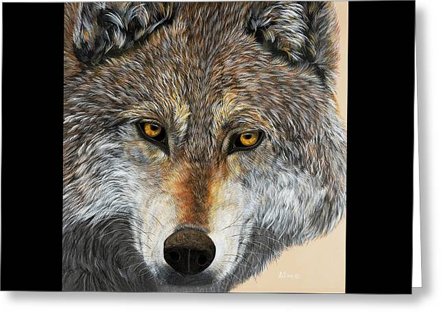 Wolves Greeting Cards - Alpha Male Greeting Card by Debbie Chamberlin