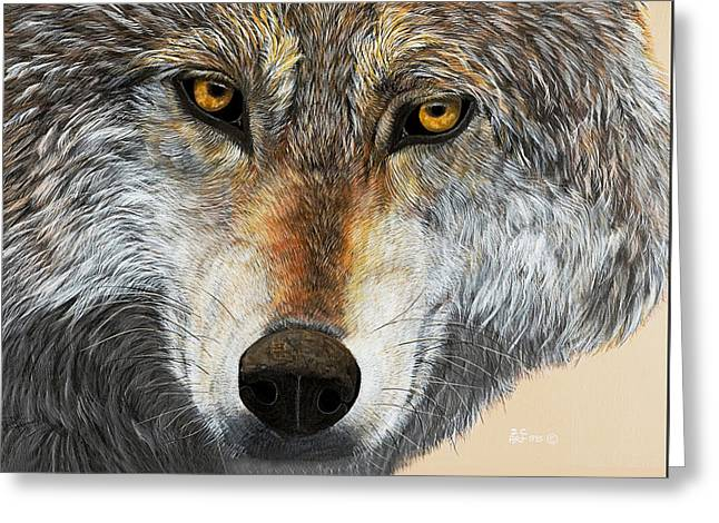 Wolf Greeting Cards - Alpha Male Greeting Card by Debbie Chamberlin