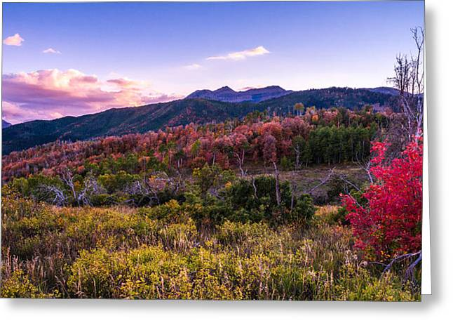 Alpine Fall Greeting Card by Chad Dutson