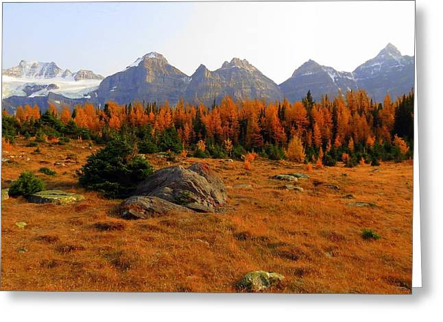 Alpine Larch Meadow Greeting Card by Ramona Johnston