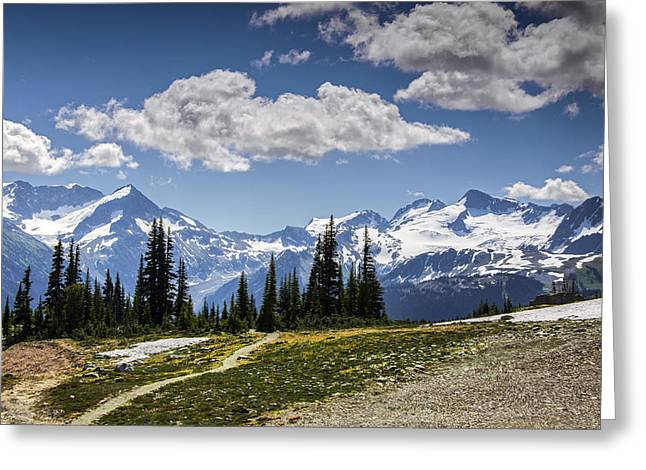 Alp Greeting Cards - Alpine Path Greeting Card by Aaron S Bedell