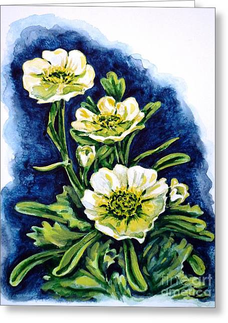 Alpine Ranunculus Greeting Card by Zaira Dzhaubaeva