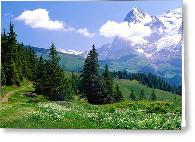 Best Sellers -  - Swiss Photographs Greeting Cards - Alpine Scene Near Murren Switzerland Greeting Card by Panoramic Images
