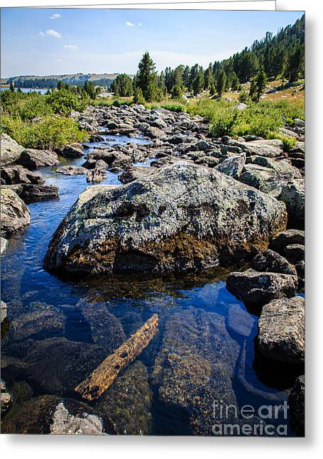 Alpine Stream Beartooth Mounain Range Greeting Card by Edward Fielding