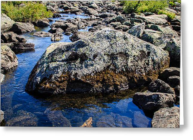 Alpine Stream Beartooth Mounain Range Greeting Card by Edward Fielding