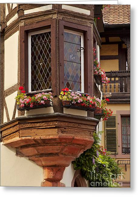 Route Des Vins Greeting Cards - Alsace Window Greeting Card by Brian Jannsen