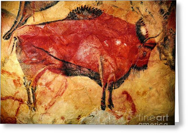 Paleolithic Greeting Cards - Altamira Cave Painting Greeting Card by Pg Reproductions