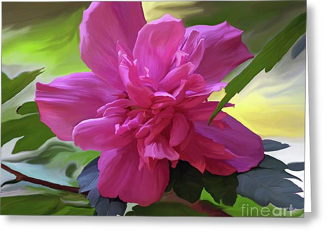 Althea Digital Art Greeting Cards - Althea Hibiscus I Greeting Card by Patricia Griffin Brett
