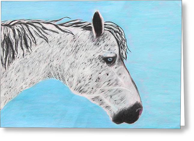 Dust Pastels Greeting Cards - Alvaro Stallion Greeting Card by Jeanne Fischer