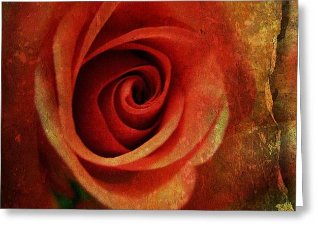 Always Be My Dream Greeting Card by Shirley Sirois