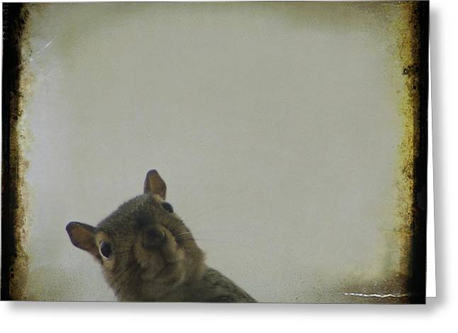 Old Film Greeting Cards - Always Feels Like Someone Is Watching Me Greeting Card by Gothicolors Donna Snyder