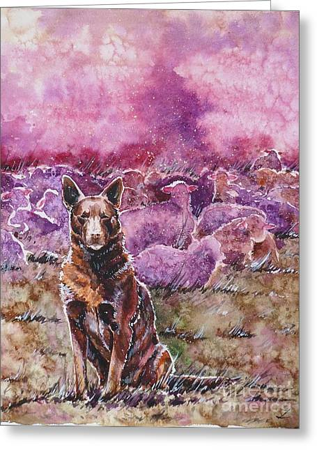 Kelpie Paintings Greeting Cards - Always on Duty Greeting Card by Zaira Dzhaubaeva