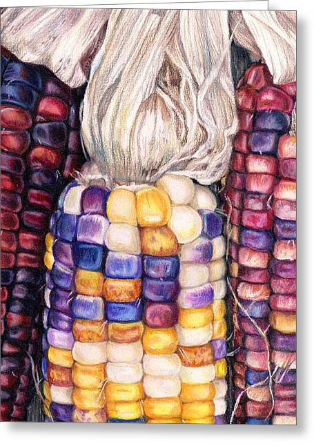 Cob Drawings Greeting Cards - aMAIZEd Greeting Card by Shana Rowe