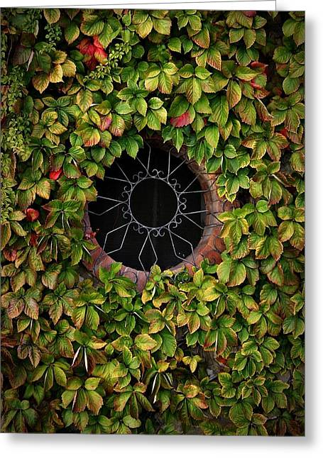 Grate Greeting Cards - Amalfi Window Ivy Greeting Card by Henry Kowalski