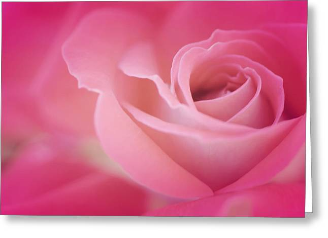 Artist Photographs Greeting Cards - Amar Siempre Greeting Card by  The Art Of Marilyn Ridoutt-Greene