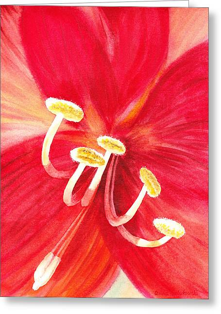 Close Up Paintings Greeting Cards - Amaryllis Flower Greeting Card by Irina Sztukowski