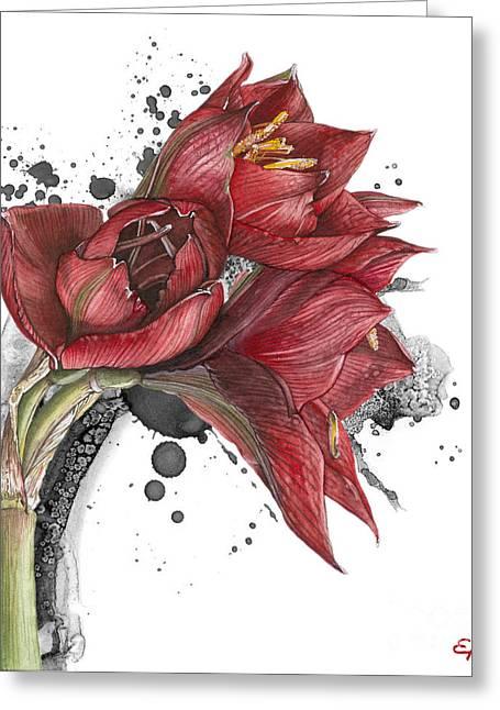 Amaryllis Flowers - 2. -  Elena Yakubovich Greeting Card by Elena Yakubovich