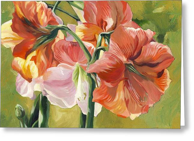 Amaryllis In Spring Greeting Card by Alfred Ng