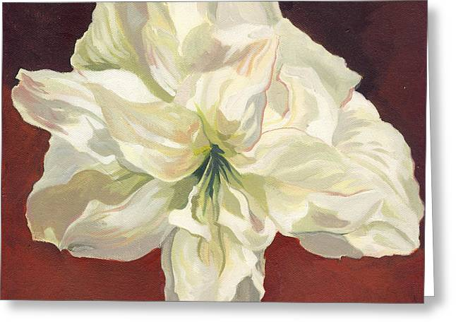 Amaryllis With Red Greeting Card by Alfred Ng