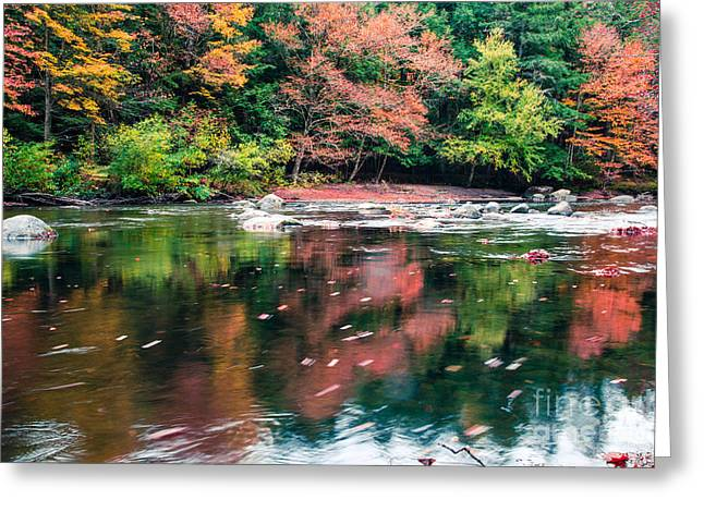 Turning Leaves Photographs Greeting Cards - Amazing fall foliage along a river in New England Greeting Card by Edward Fielding