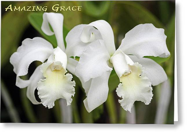 Sympathy Greeting Cards - Amazing Grace Greeting Card by Dawn Currie