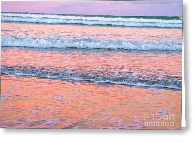 Amazing Pink Sunset Greeting Card by Michele Penner