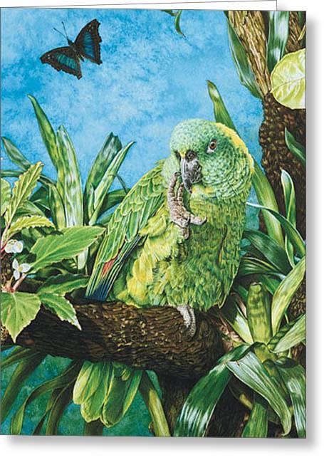 Amazon Greeting Card Greeting Cards - Amazoinan Bliss 2 -Greeting Card Greeting Card by Carole Niclasse