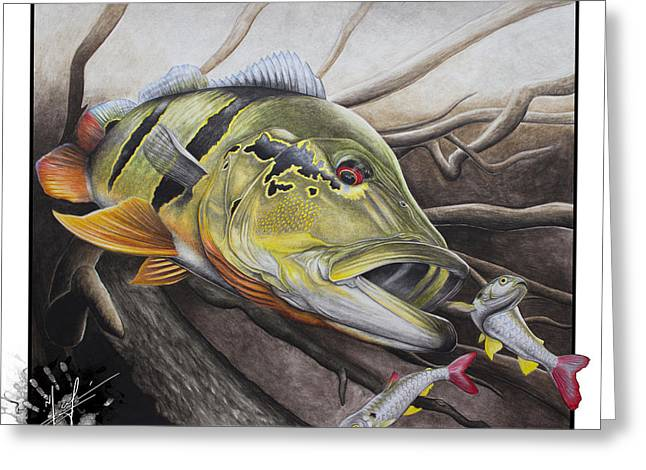 Fly Fishing Drawings Greeting Cards - Amazon Assault Greeting Card by Nick Laferriere