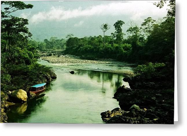 Aidan Moran Photography Greeting Cards - Amazon River Scene Greeting Card by Aidan Moran