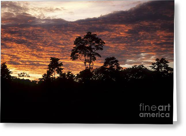 Amazon Sunset Greeting Card by James Brunker