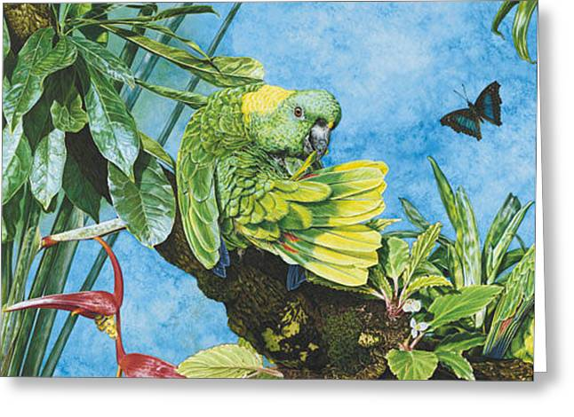 Amazon Greeting Card Greeting Cards - Amazonian Bliss - Card Greeting Card by Carole Niclasse