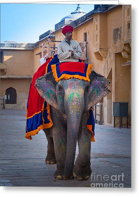 Jaipur Greeting Cards - Amber Fort Elephant Greeting Card by Inge Johnsson